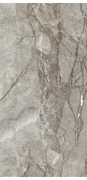 Zibra Grey